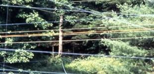33 Gorenflo Gap